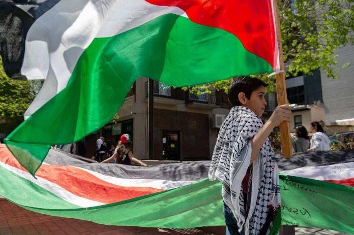 dia palestina colombia
