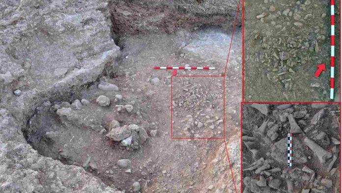 Excavación del s. XVI