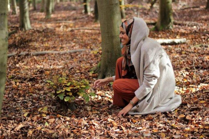 El Islam y el medio ambiente